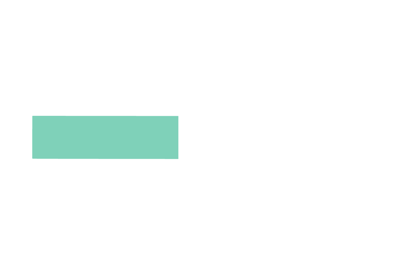 Americas Future Logo_Negative